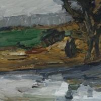 Am Altrhein - Ried, 30 x 30 cm
