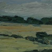 Scheftheimer Wiesen, 30 x 30 cm