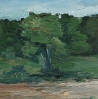 Am Oberfeld II, 30 x 30 cm
