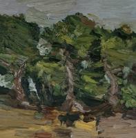 Eichen am Oberfeld, 30 x 30 cm