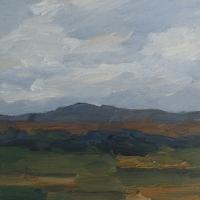 Pfungstädter Moor, 30 x 30 cm