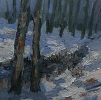 Im Bessunger Forst (2)